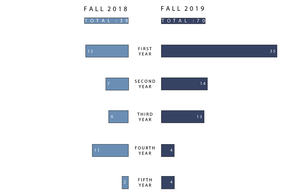 Chart of AIAS Mentorship Numbers 2018-2019