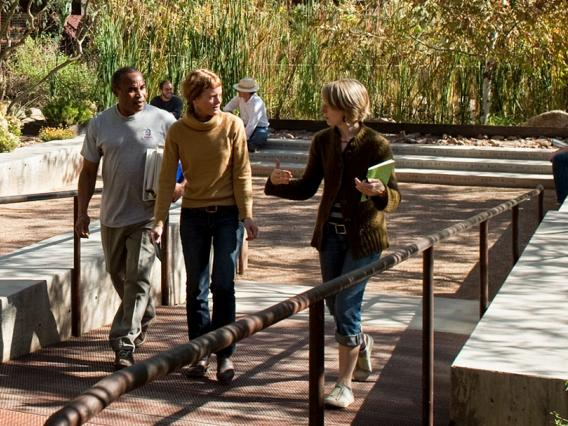 Diverse students and faculty in CAPLA's Underwood Garden