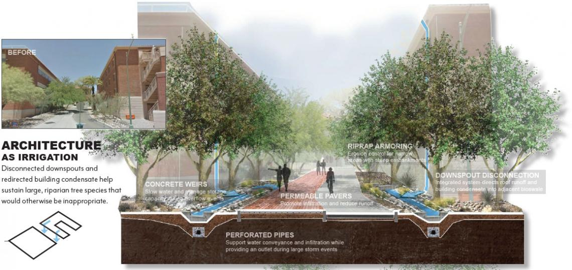 UArizona EPA Campus RainWorks Challenge Design