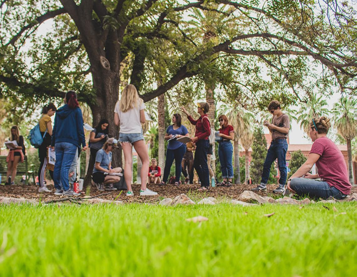 CAPLA students on grass lawn near large tree