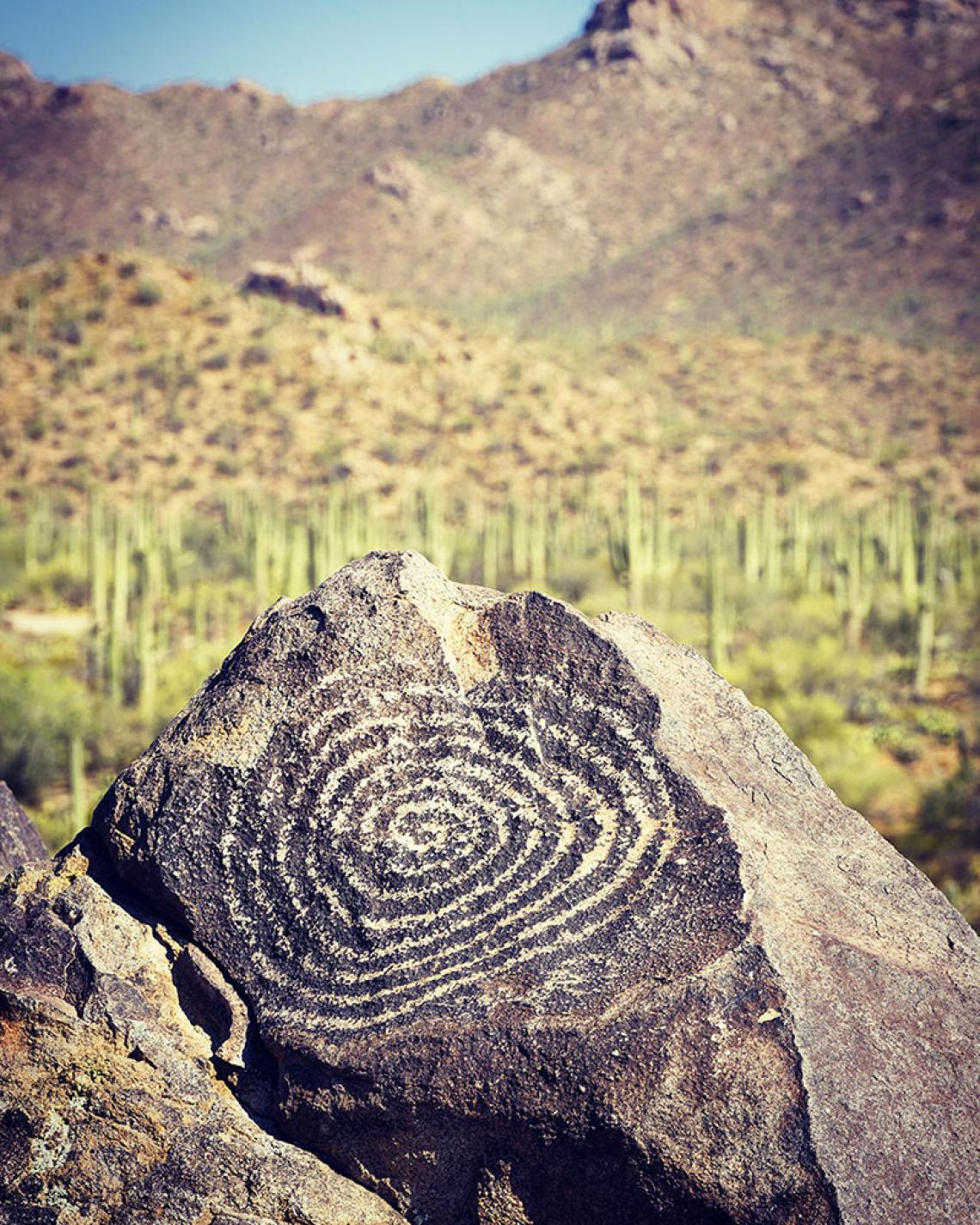 Signal Hill at Saguaro National Park