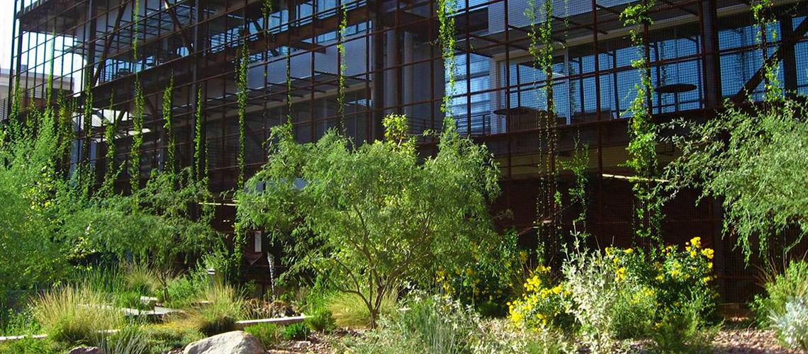 CAPLA East Building and Underwood Sonoran Garden. Photo by Bill Timmerman.