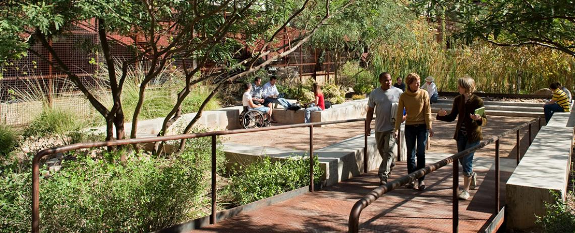 Faculty and students in the Underwood Sonoran Garden