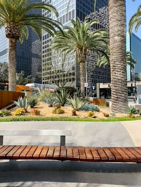Landscaping and bench in downtown Los Angeles